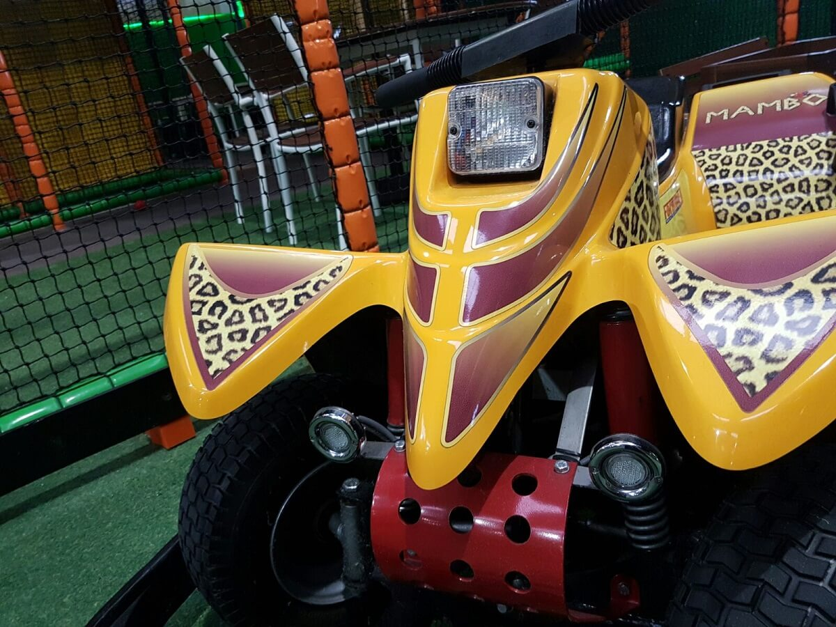 Leopard Go Kart ready to play